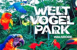 Sehenswürdigkeiten in Walsrode